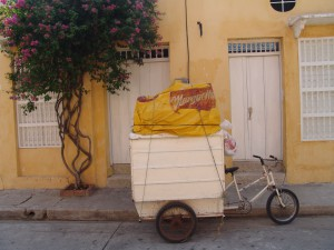 local transportation options