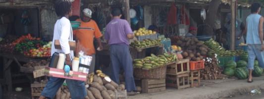 Colombian Food Costs - Basurto
