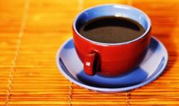 gormet coffee