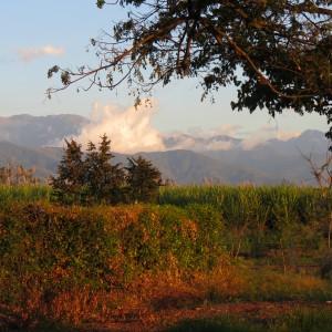 Ginebra, Valle del Cauca